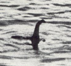 230px-Hoaxed_photo_of_the_Loch_Ness_monster