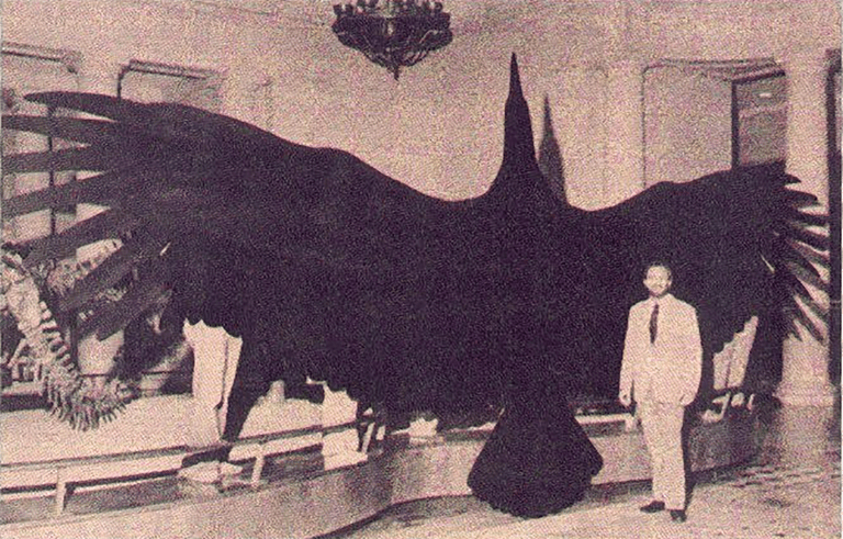giant-thunderbird-56c0d4de5f9b5829f86738ca